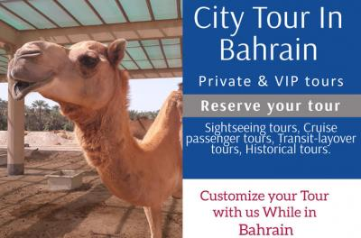 Customize your tour in Bahrain -Private Tour