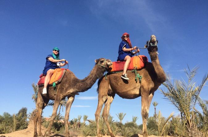 Small-Group Tour: Camel Ride through the Palm Grove of Marrakech
