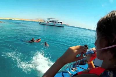 Snorkeling Trip In Tiran Island By Boat